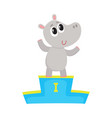cute hippo character champion standing on top of vector image vector image