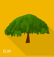 elm icon flat style vector image vector image