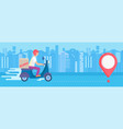fast and free delivery service vector image