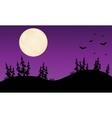 Halloween bat purple backgrounds vector image