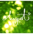 Handmade calligraphy and text August vector image vector image