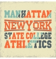 New York Sport t-shirt graphics vector image vector image