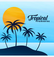 tropical paradise summer background design vector image