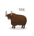 a cartoon yak with curly horns isolated on a vector image
