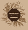 bakery design template hand drawn wheat vector image
