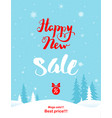 big winter holiday sale vector image