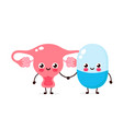 cute strong happy smiling pill and uterus vector image vector image