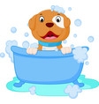 dog cartoon bath vector image