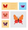 flat monarch set of violet wing moth danaus vector image