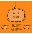 Hanging pumpkin and two spiders Dash line vector image vector image