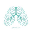 lungs with foliage vector image vector image