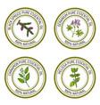 set of essential oil labels black spruce geranium vector image vector image