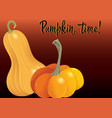 two orange pumpkin on deep red background vector image vector image