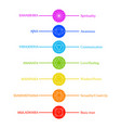 chakra icons with respective colors names and the vector image vector image