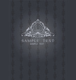 Dark Gray Ornate Cover vector image vector image