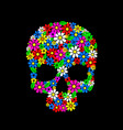 painting skull flowers isolated on black color vector image