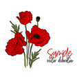 red poppies flowers bloom symbol of spring vector image vector image