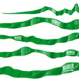 Saudi Arabia flag set on white background vector image