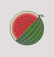 watermelon fruit isolated vector image