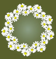 wreath from white daisies on a green background vector image