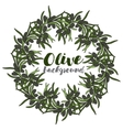 wreath with branch of olive vector image
