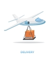 Delivery plane vector image
