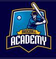 baseball badge academy design vector image