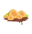 Caramel Rocks With Chocolate Mud Fantasy Candy vector image vector image