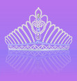 crown diadem for women wedding on bright vector image