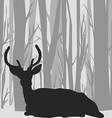 Deer stag silhouette in forest landscape vector image