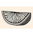 fruit with abstract pattern vector image