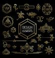 Icon set gold line art mono outline ornament vector image vector image
