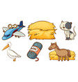 set cute animals and other things on white vector image