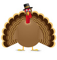 thanksgiving turkey bird isolated on white vector image