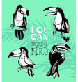 Tropical summerset with toucan birds Ink splatter vector image vector image