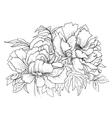 Beautiful hand drawn of vector image