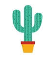 cactus plant nature icon vector image