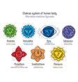 chakras system with glands vector image vector image