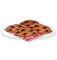 cookies with chocolate chips on a plate vector image