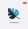 two color leaf monstera icon from nature concept vector image vector image