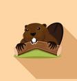 beaver gnaws a tree vector image vector image