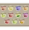 Collection Of Stickers For Smoothies vector image