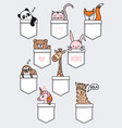 cute baby animals in a pocket set vector image vector image