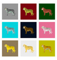 set of in flat style tigers vector image