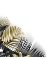 tropical black and gold leaves on white background vector image vector image