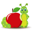 caterpillar worm with red apple funny baby vector image