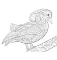 adult coloring bookpage a cute duck on the brunch vector image vector image
