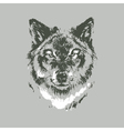 Hand drawn wolf sketch vector image vector image