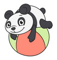 little panda playing ball 2 vector image vector image