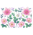 pink flowers buds and green leaves set vector image vector image